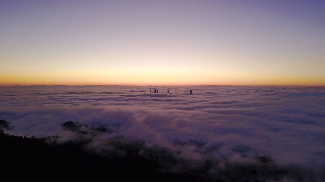 In pictures: Brisbane wakes up to thick fog blanket