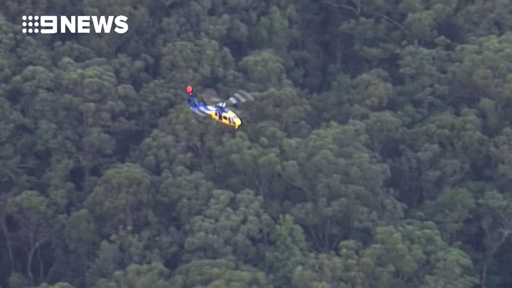 Authorities are searching for a missing pilot in far north-eastern NSW. (9NEWS)