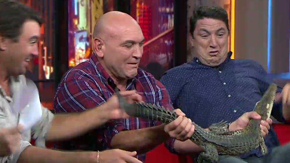 Crocodile terrifies live TV panel with subtlest of movements