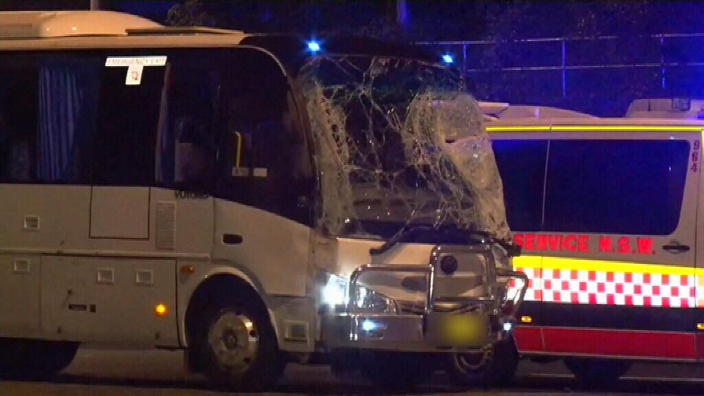 Woman killed by minibus while changing tyre on Sydney freeway
