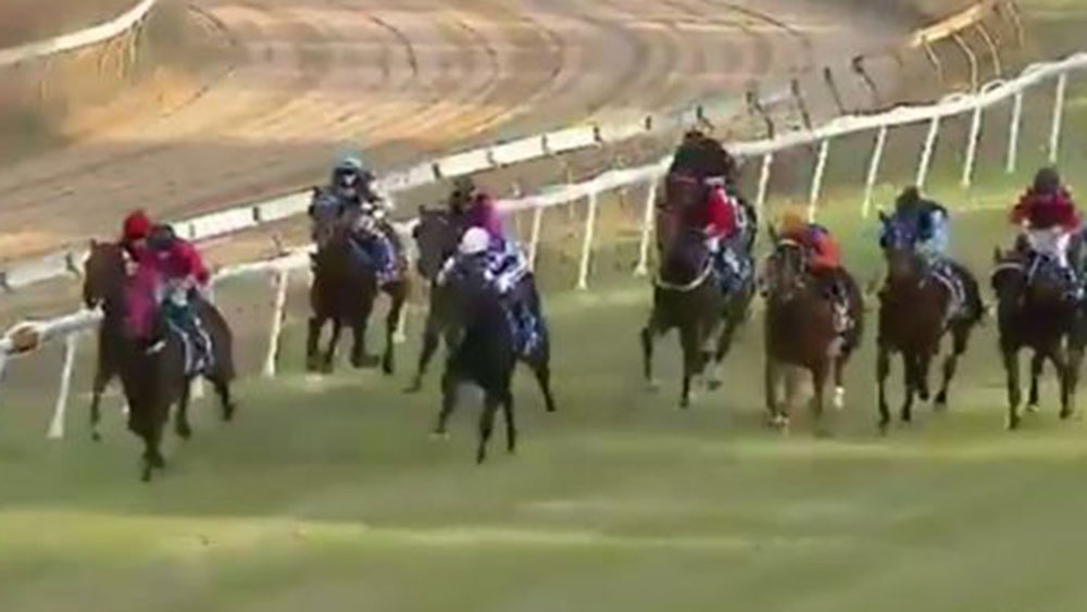 Horsey McHorseface records his maiden win.