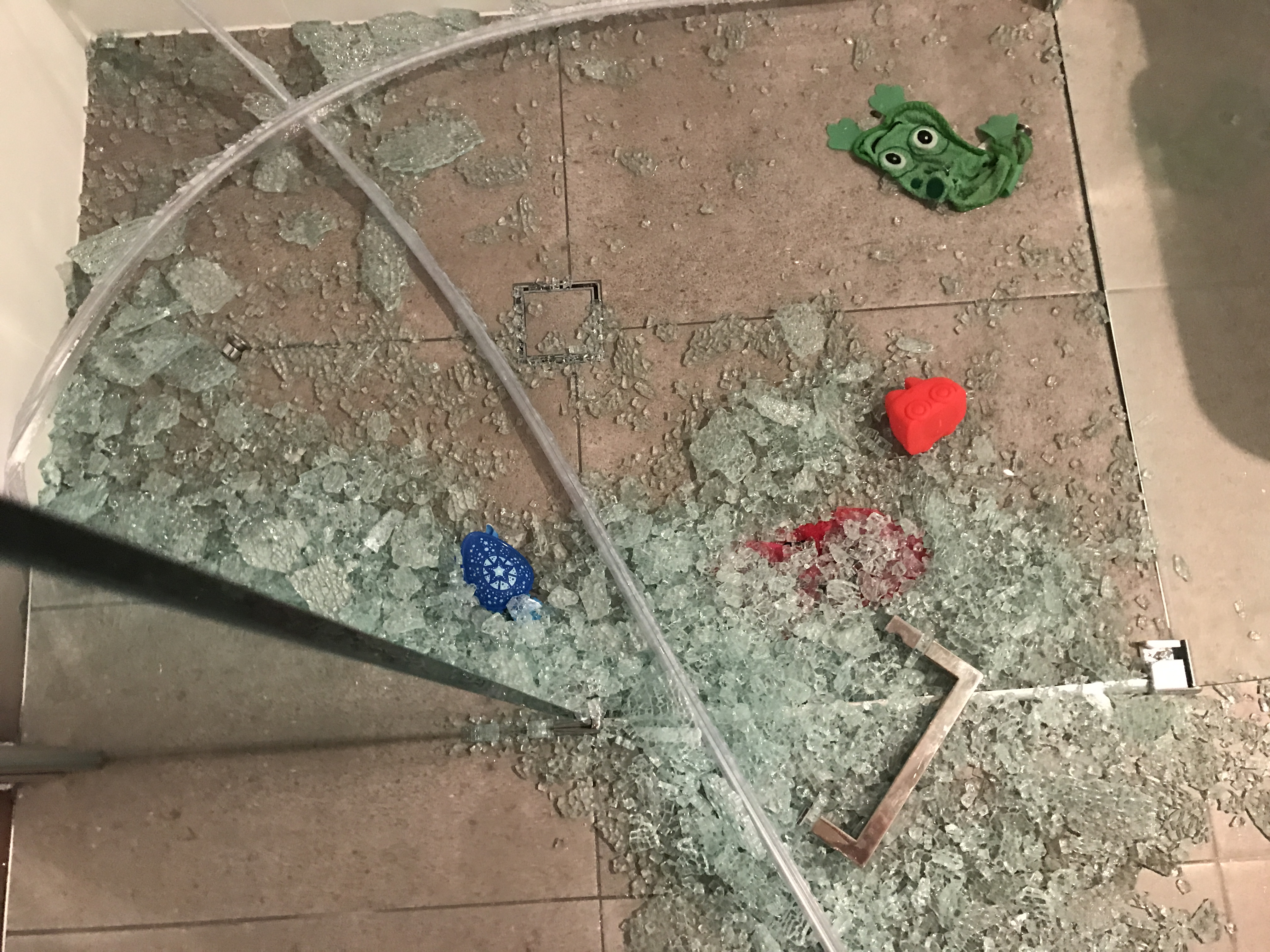 The shards of glass. (Supplied)