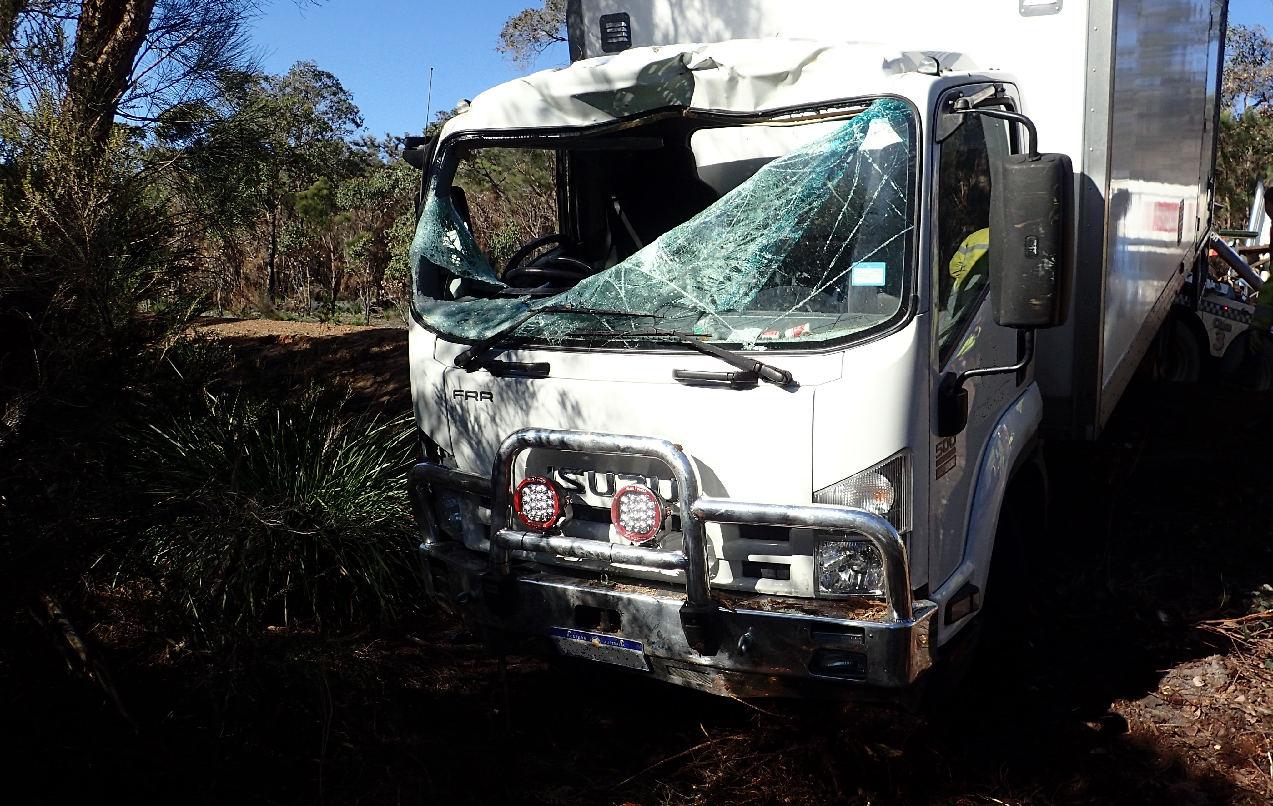 Man dies after kangaroo smashes into truck windscreen