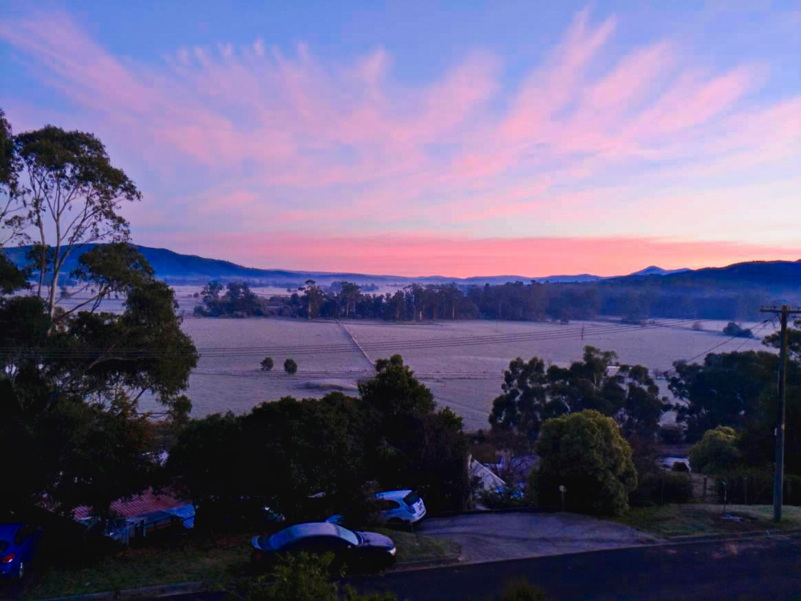 Yarra Valley frost this morning. (Henk Wolthuizen)