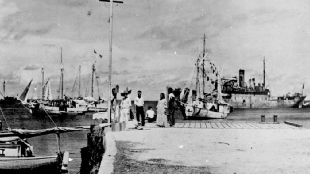 Photo shows Amelia Earhart might have survived crash