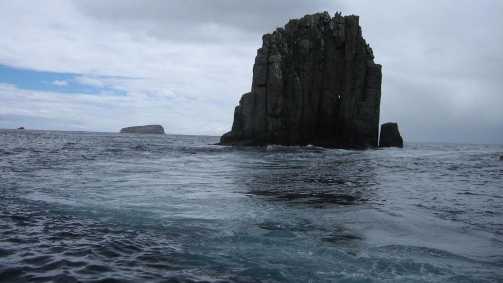 More Tas marine heatwaves likely: study