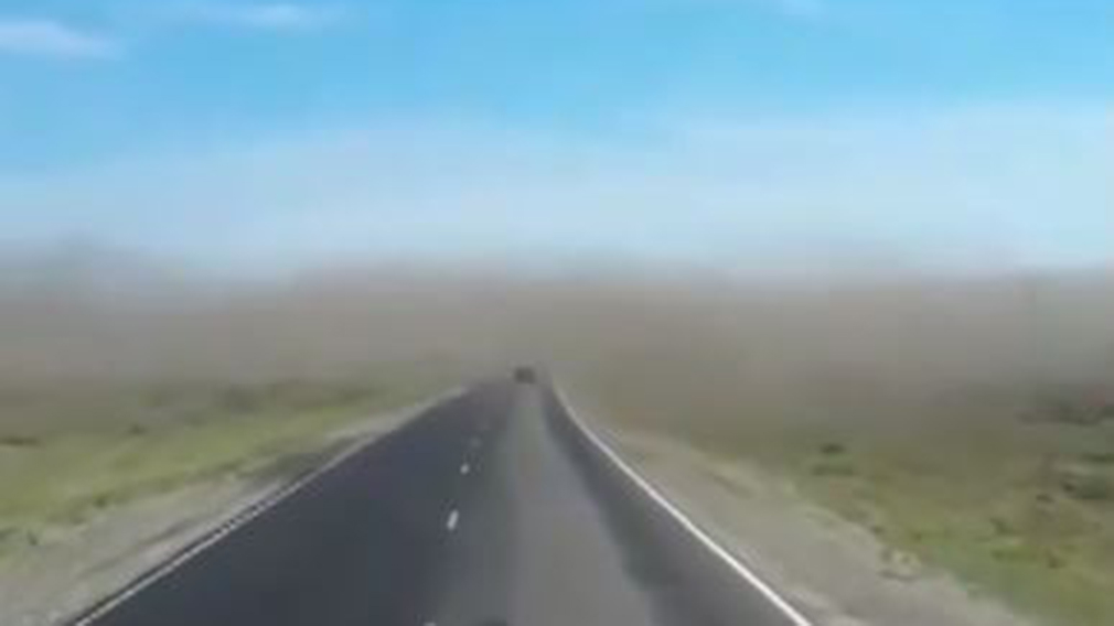 Russian drives into enormous swarm of locusts