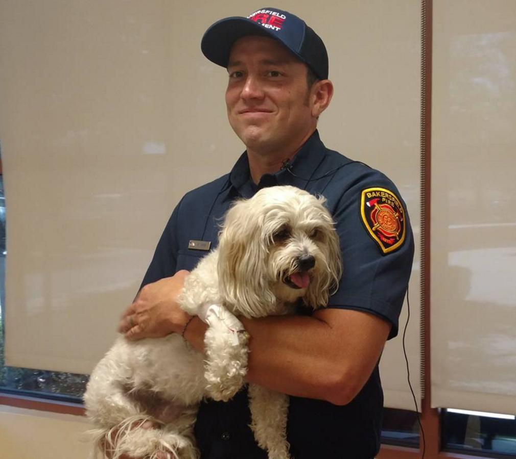 Firefighter Matt Smith saved the dog