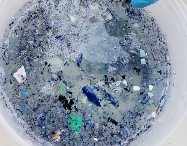 Microscopic pieces of plastic found in the giant garbage patch. (researchgate.net)