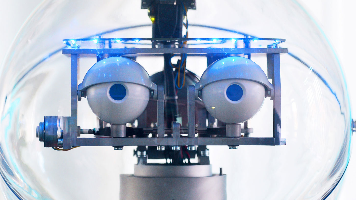 Facebook shut down an experiment into AI when the bots started communicating in their own language (Martin Schutt/dpa-Zentralbild/dpa).