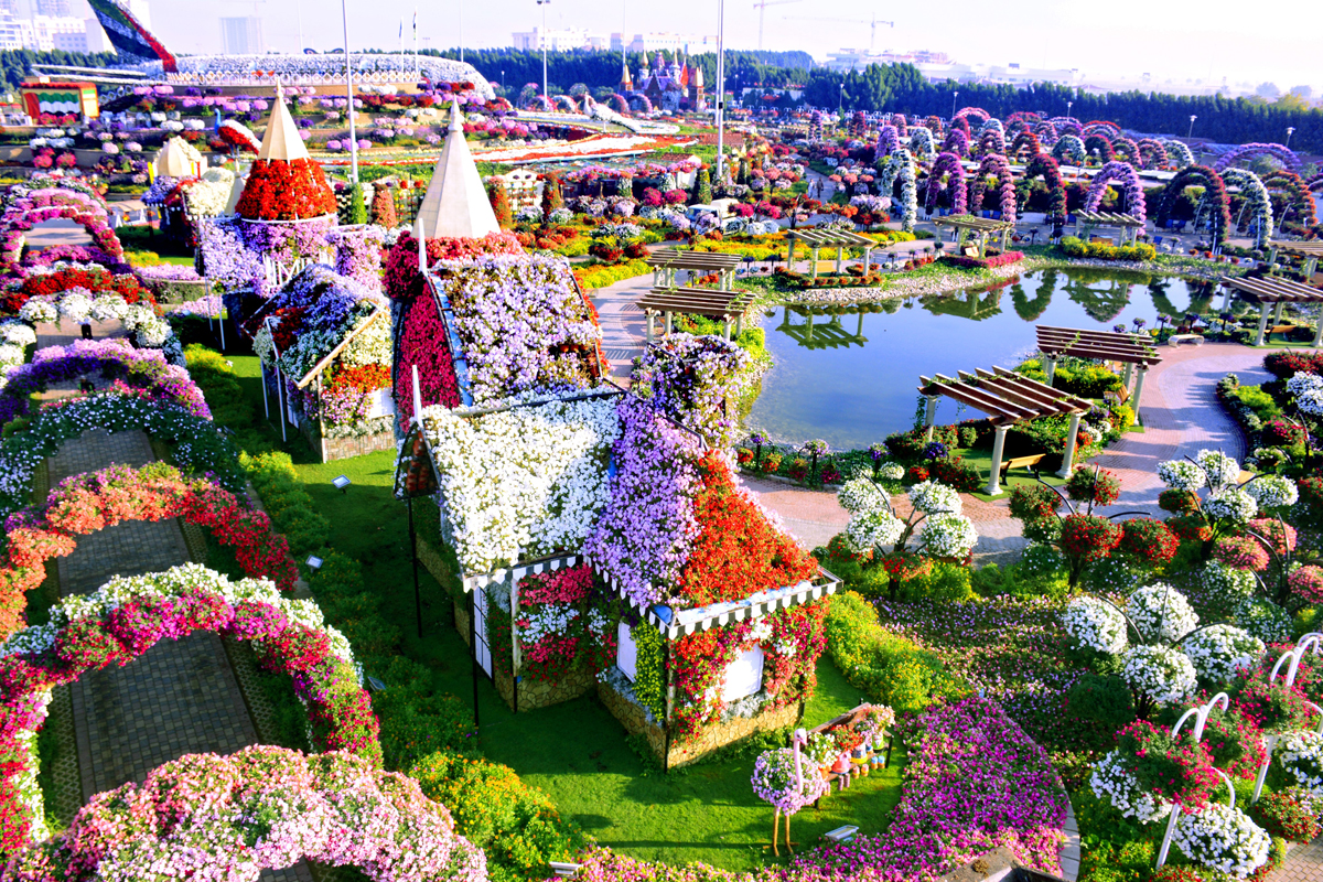The world's largest flower garden is thriving in the ... - photo#20