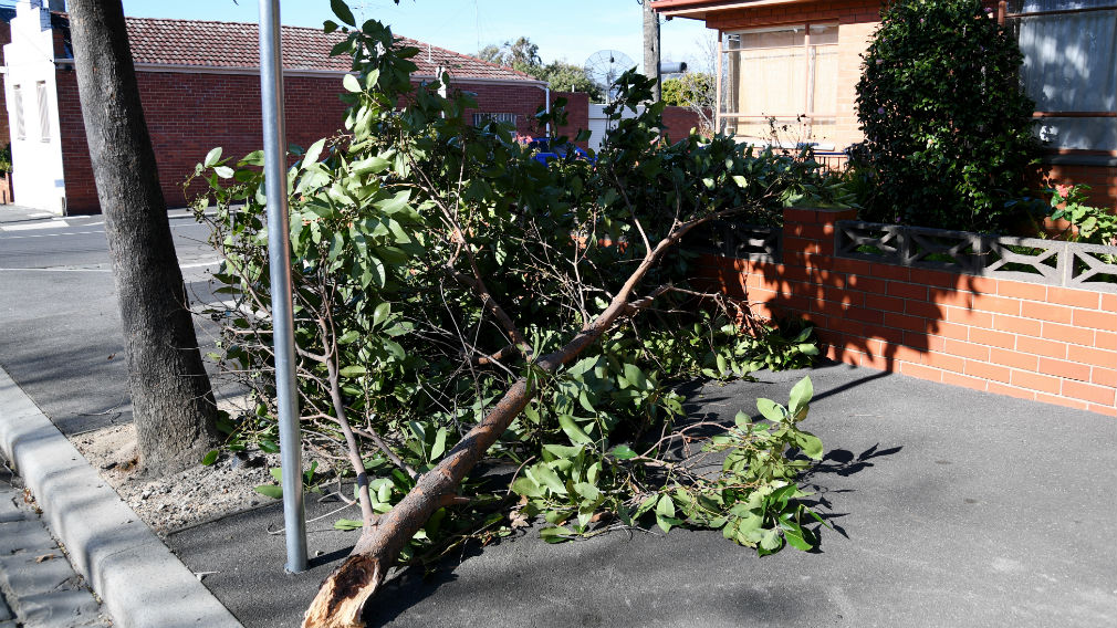 Wild winds struck Melbourne two weeks ago, causing felled trees and damaged rooves. (AAP)