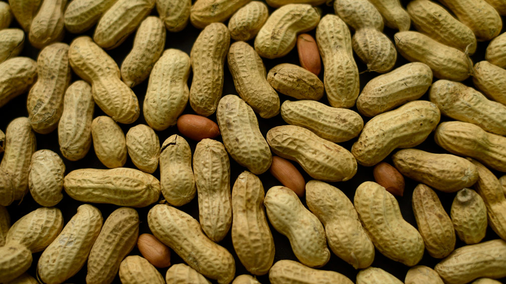 Australian treatment for peanut allergies effective for up to 4 years