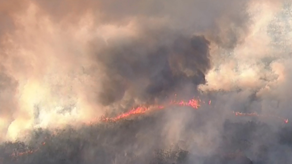 Caloundra Homes Under Threat As Large Bushfire Remains Out Of Control