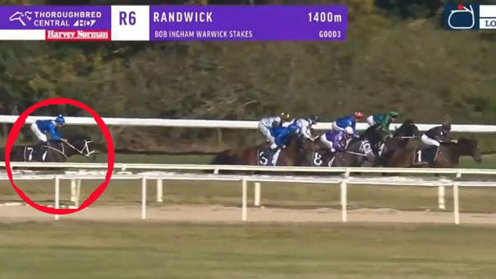 Winx recovered from a horror starrt to win at Randwick. (Sky Racing)