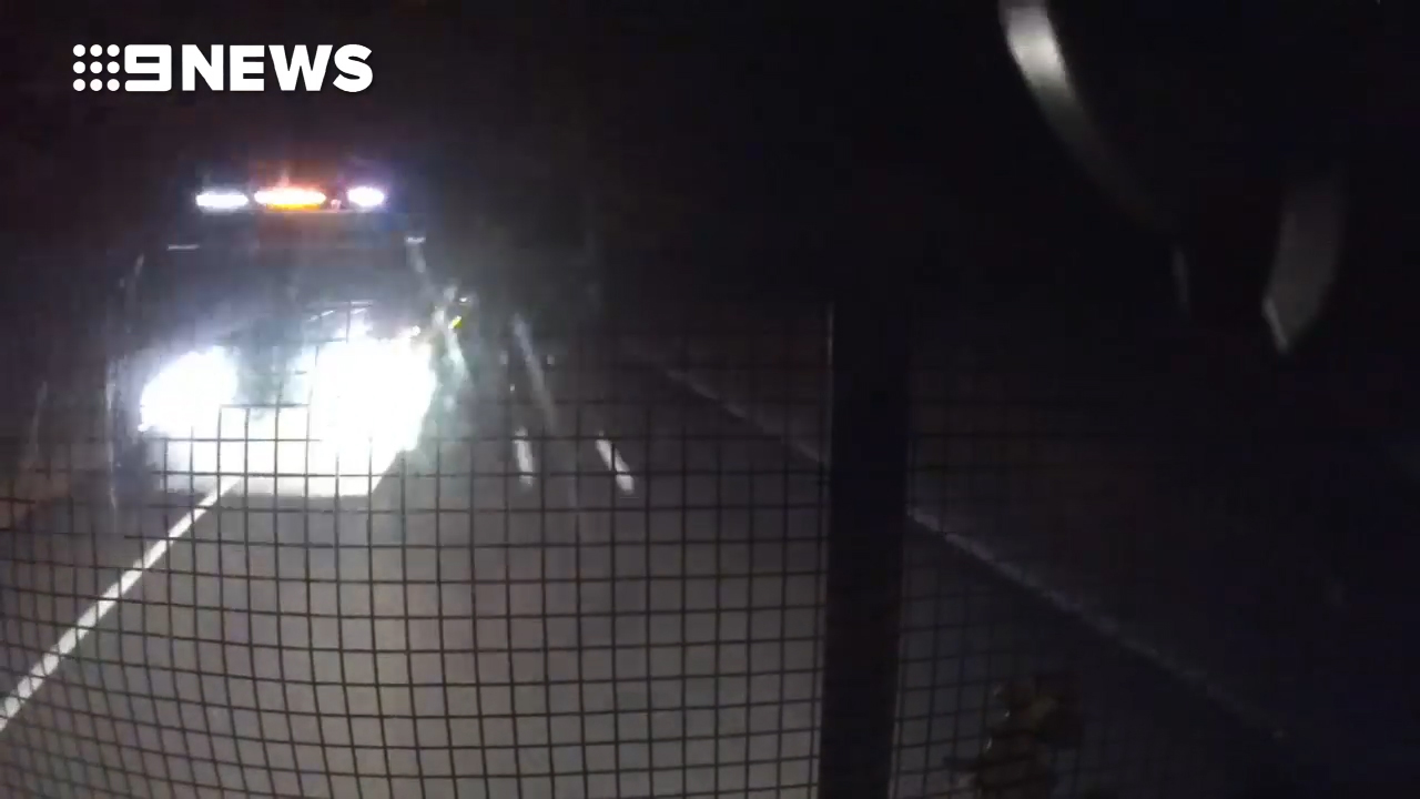 Dashcam captures moment semi-trailers collide head-on at 100km/h