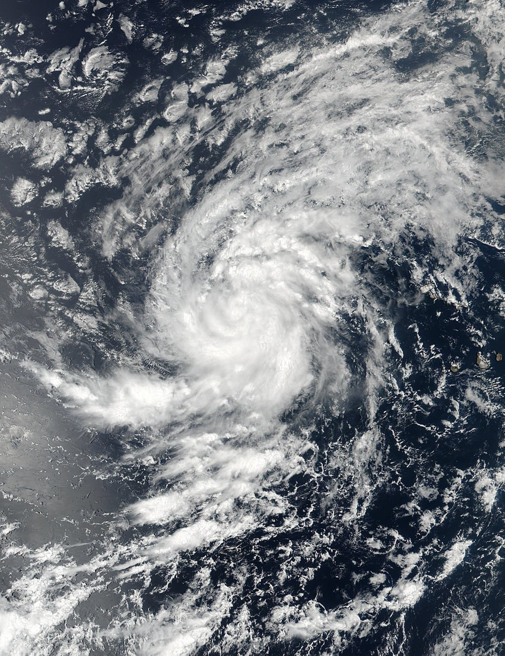 A handout photo made available by NASA shows an image acquired by the joint NASA/NOAA Suomi National Polar-orbiting Partnership (NPP) satellite of then Tropical Storm Irma in the Eastern Atlantic Ocean on August 30. (AAP)