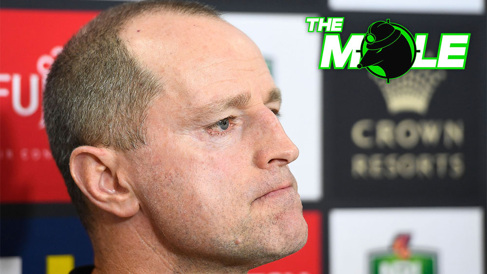 South Sydney are set to axe coach Michael Maguire. (Getty)
