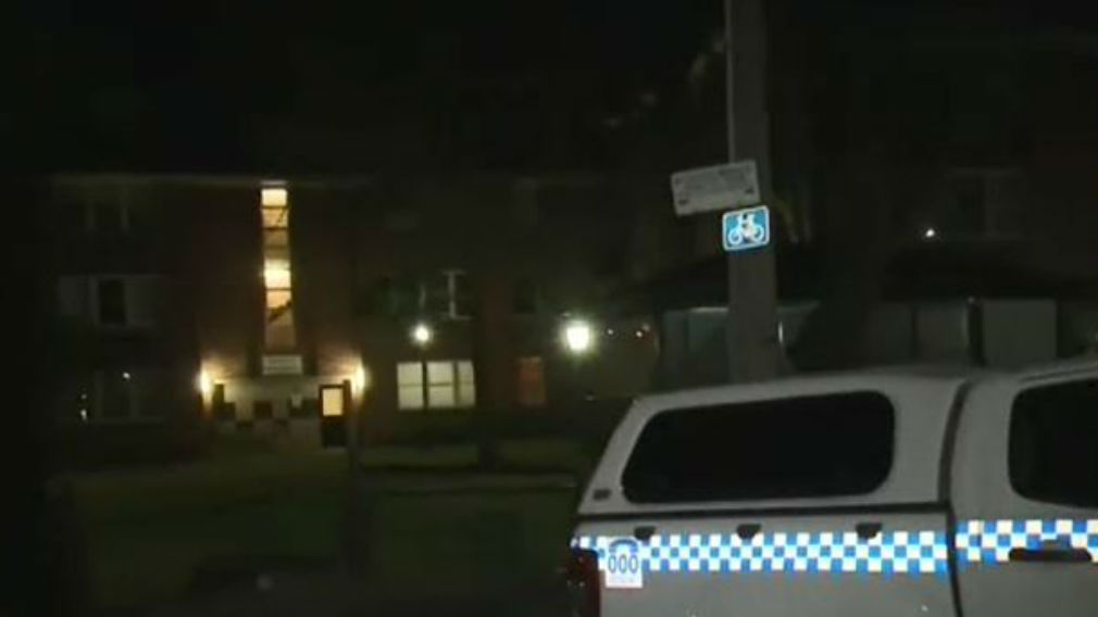It's believed the stabbing was domestic in nature. (9NEWS)