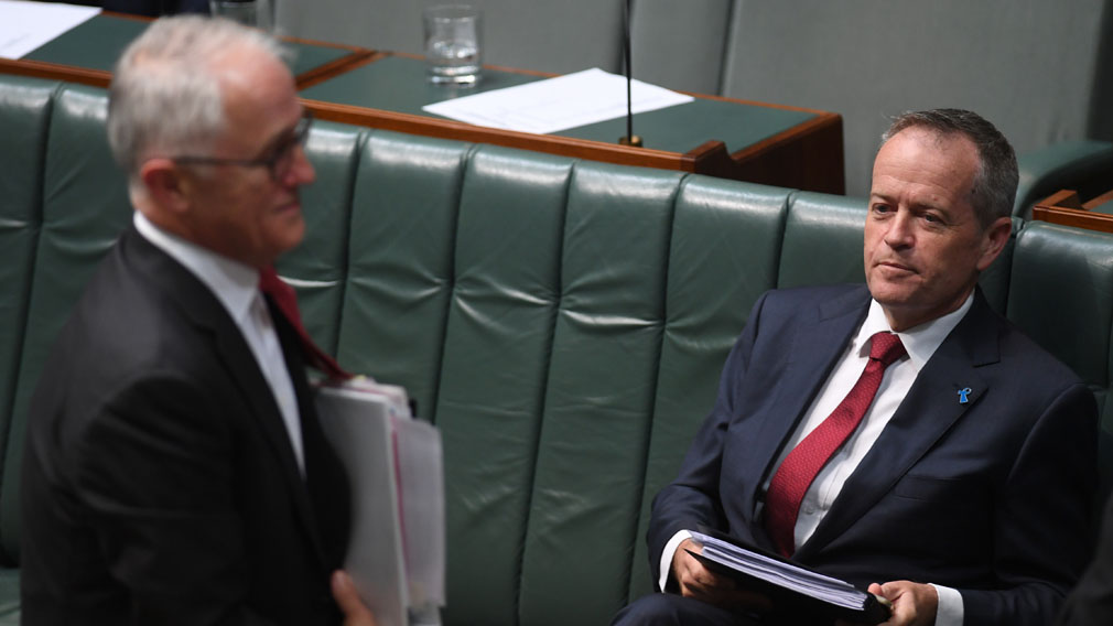 Labor leader Bill Shorten in parliament last week. (AAP)