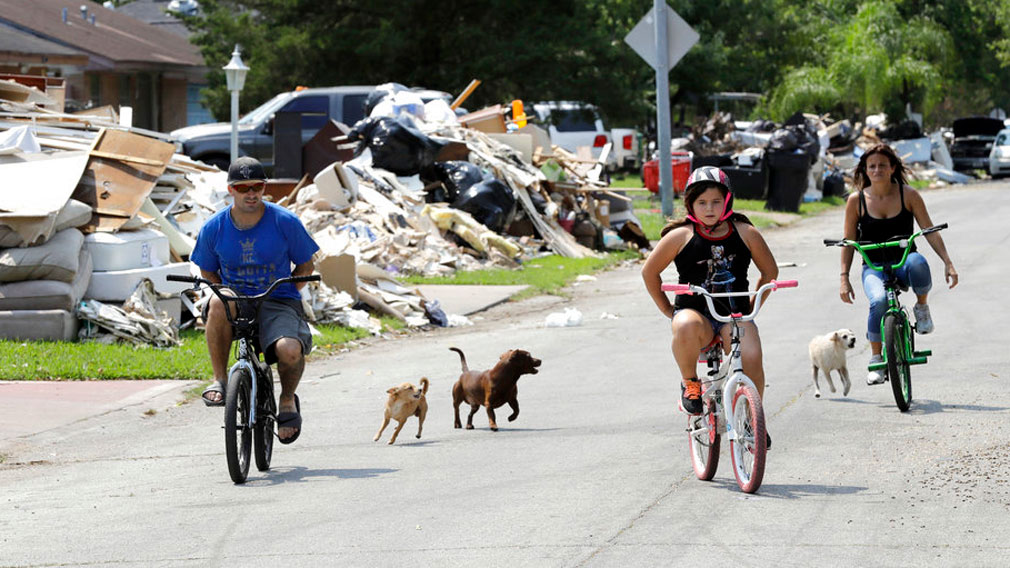 Dogs chase people riding their bicycles down a street lined with debris from flooded homes. (AP)