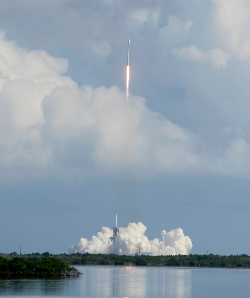 The unmanned SpaceX Falcon rocket. (AP)
