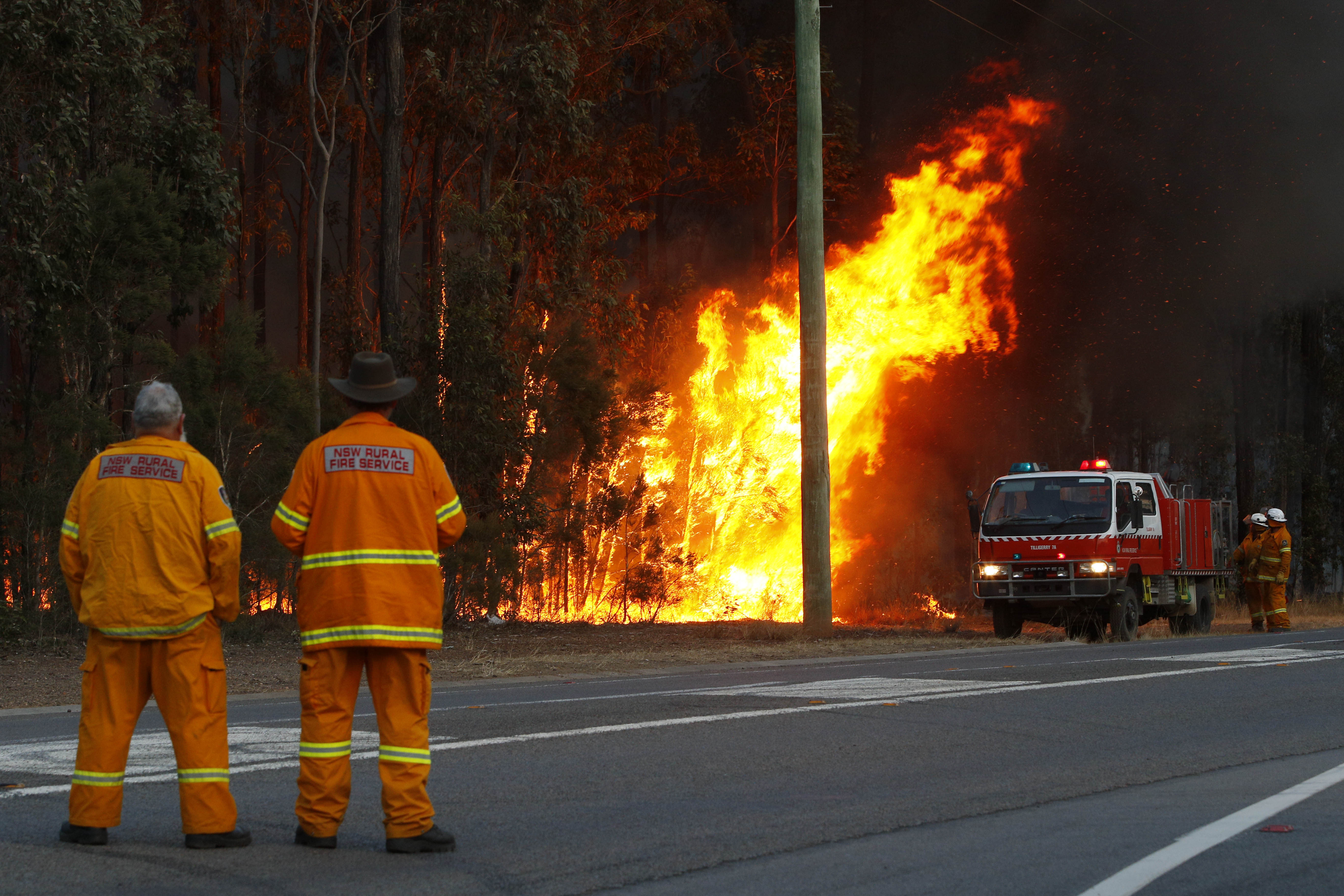 A firefighter watches a controlled blackburn along Leggetts Drive in Richmond Vale. (AAP)