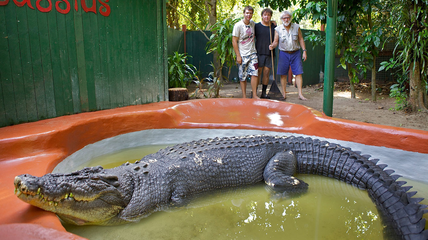 """Cassius was officially declared the """"Worlds Largest Crocodile in Captivity"""" by the Guinness Book of Records on Thursday, Sept. 15, 2011, measuring 5.48 metres and weighs close to a tonne. (AAP)"""