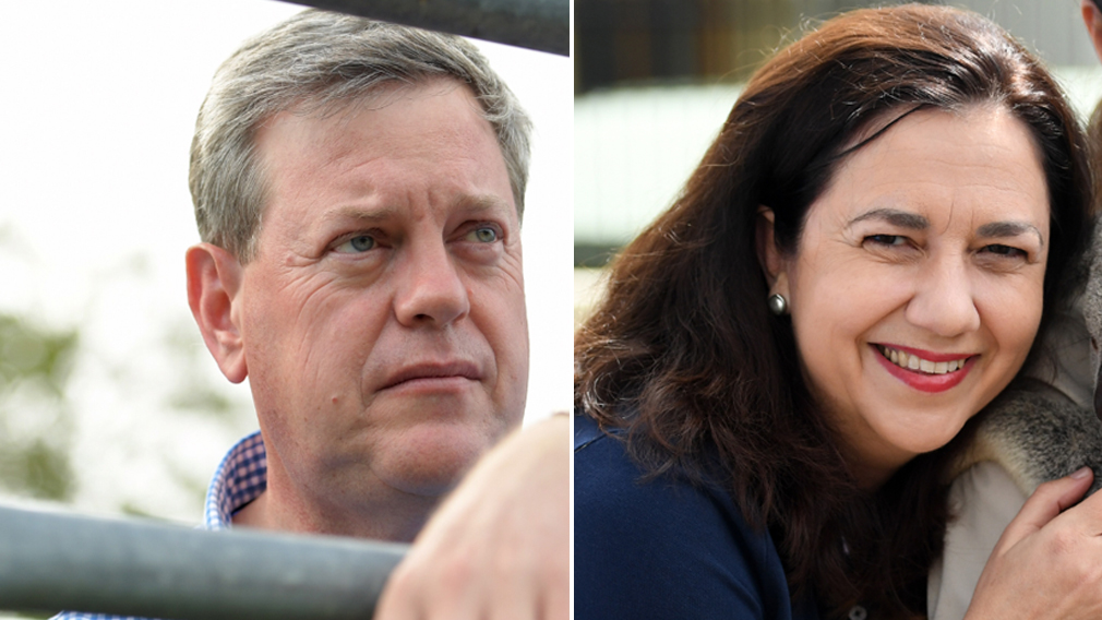 Poll predicts Queensland election win for Labor and Premier Palaszczuk