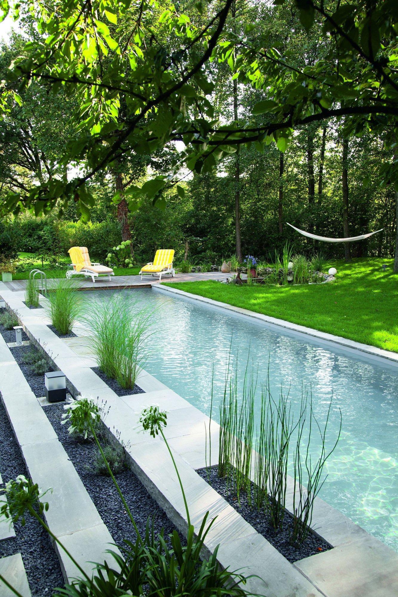 Natural Back Yard Swimming Pool
