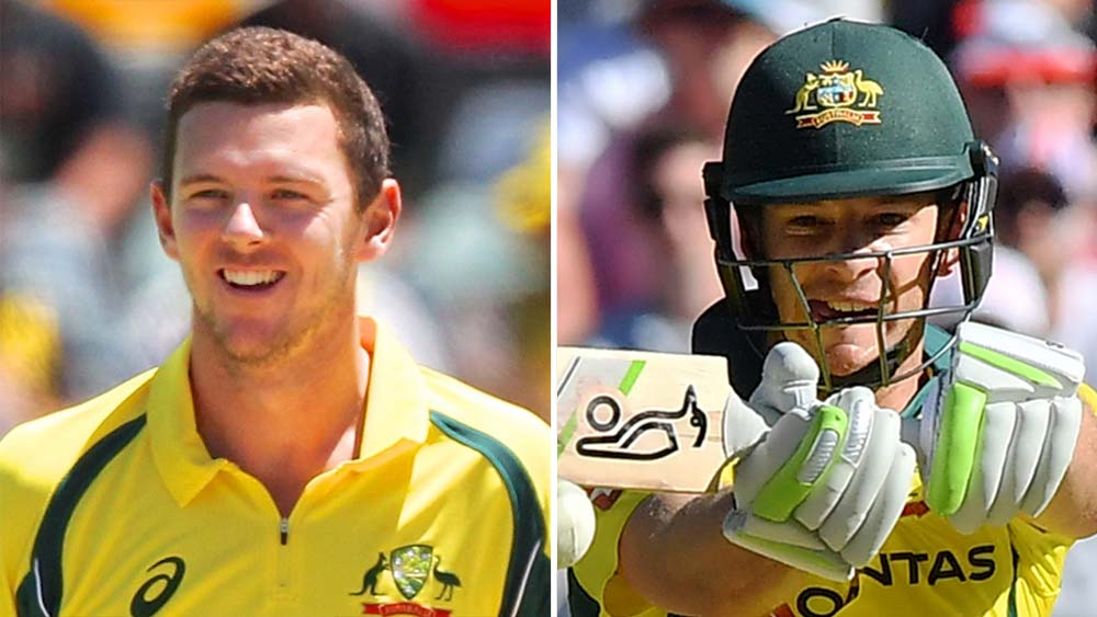 Josh Hazlewood and Tim Paine