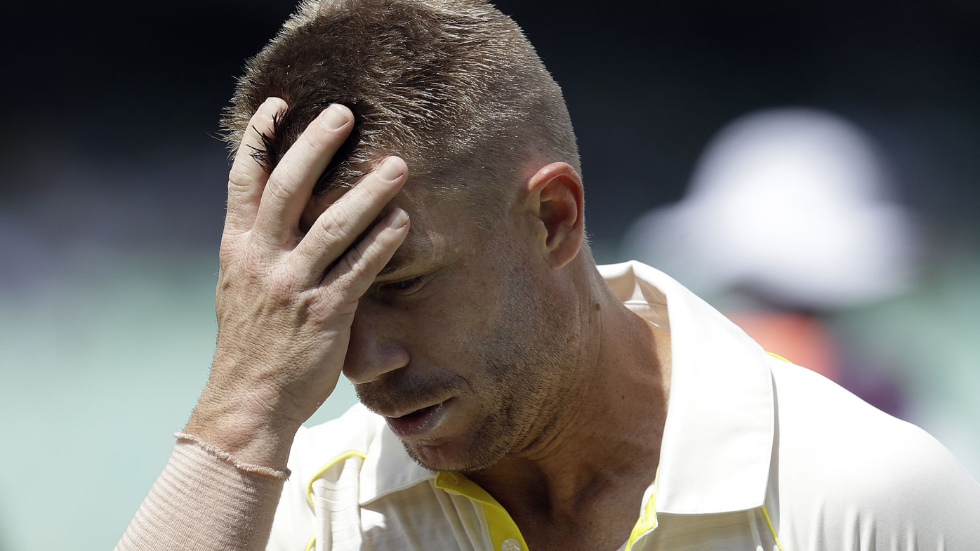 David Warner with his hands on his head