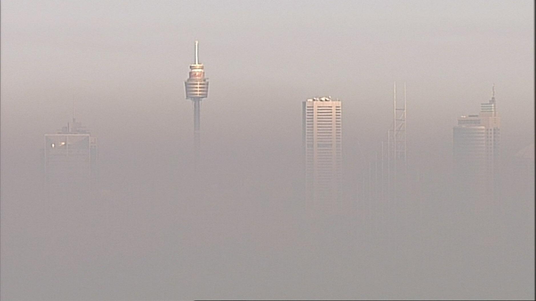 Sydney air pollution levels spark alarm, warnings