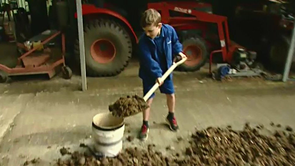 Thieves steal bags of manure from boy's honesty stall