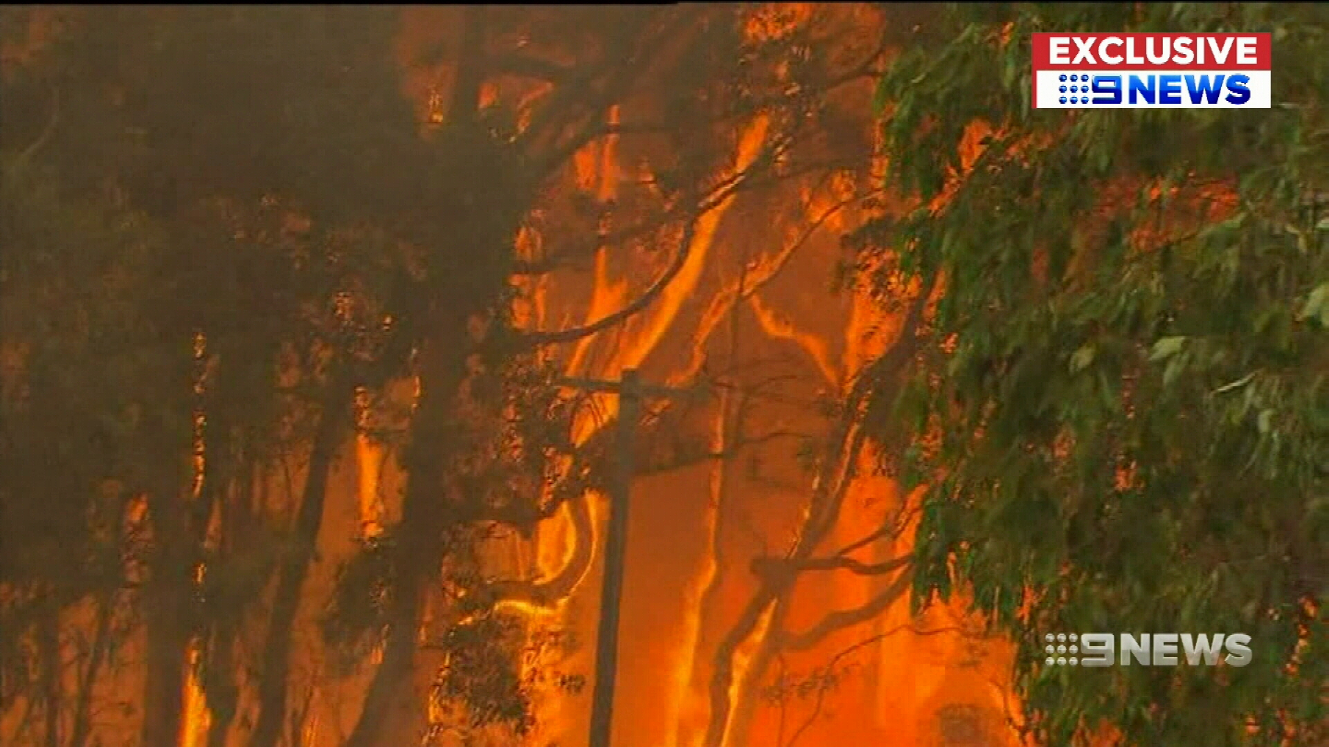 Western Power blames bushfire victim for power pole blaze