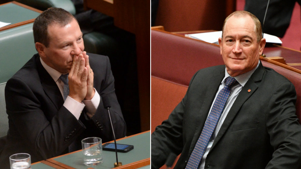Senator Fraser Anning Update: Fraser Anning: Queensland MP Says Senator Needs A Reality
