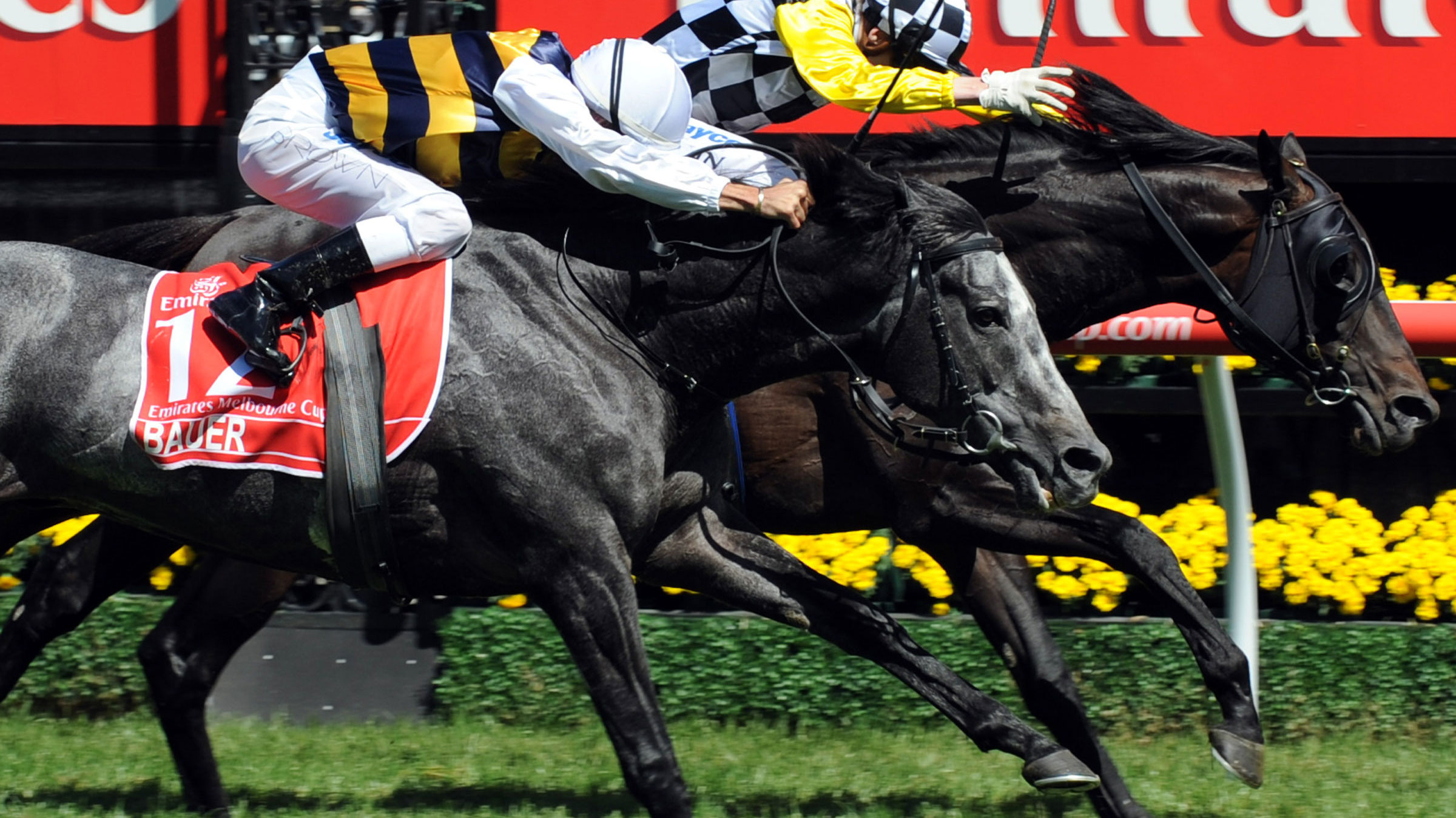 Cross Counter storms to Melbourne Cup win
