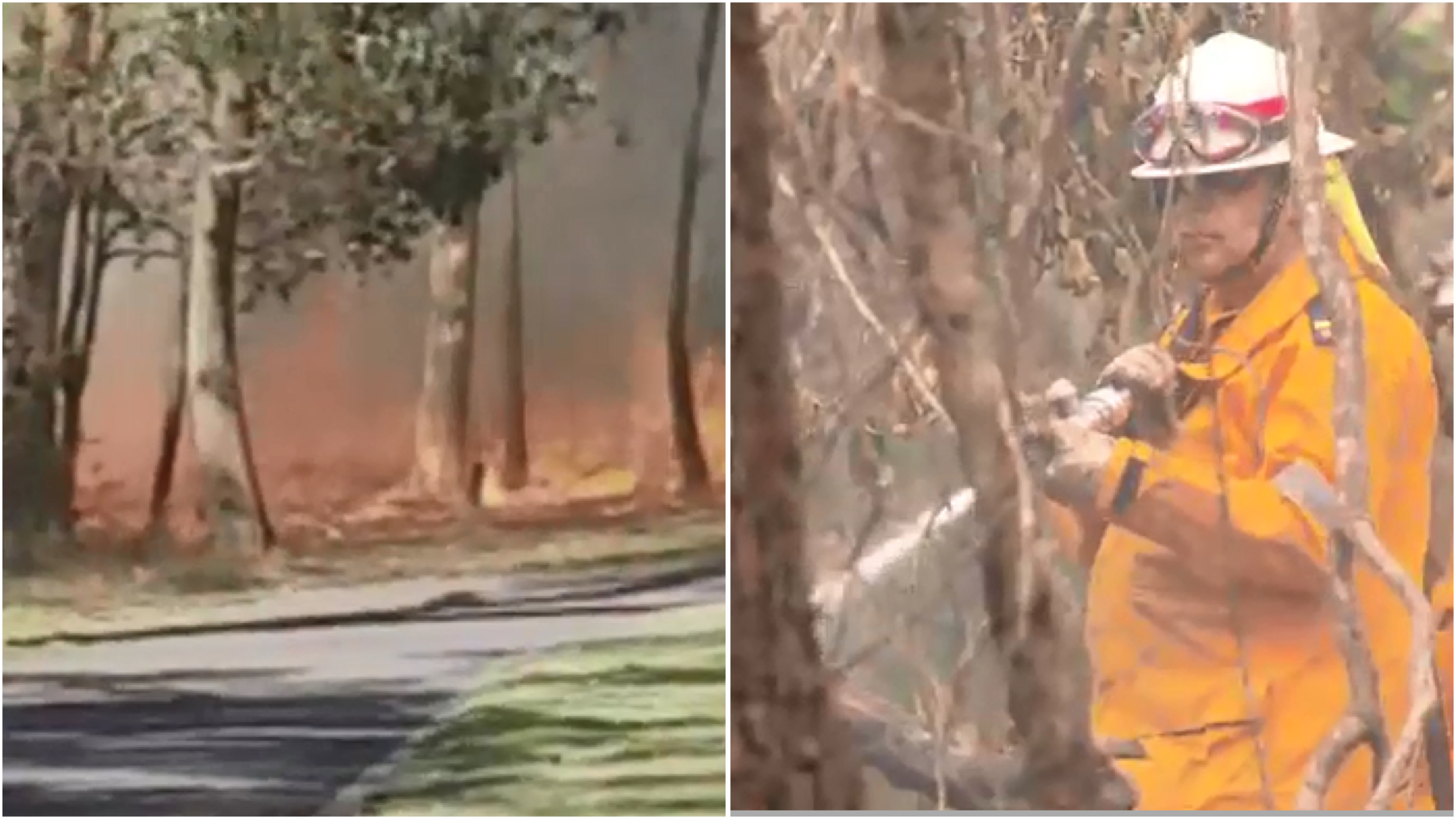 qld fires - photo #32
