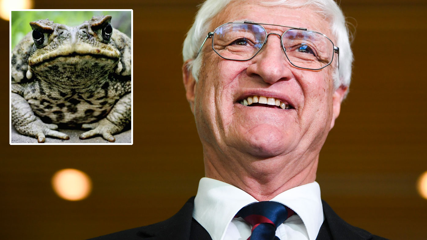 Katter wants kids to hunt cane toads with rifles 'for pocket money'