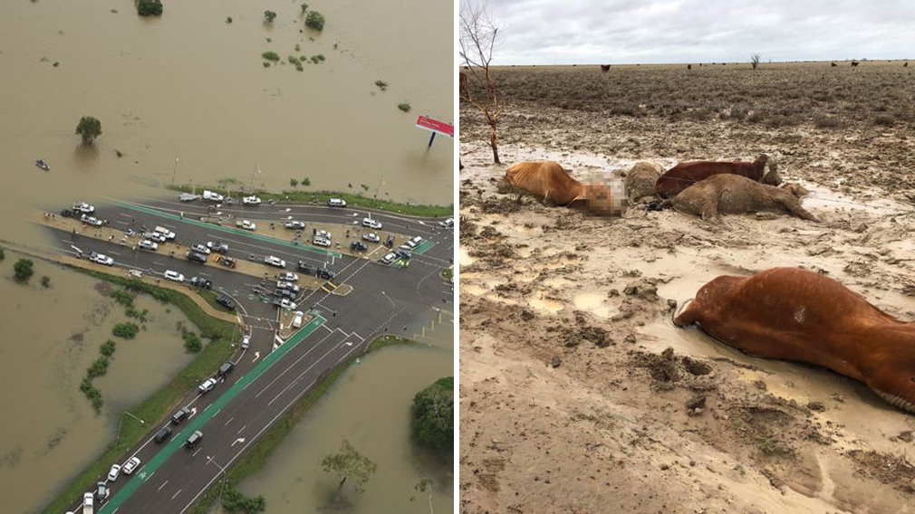 Government giving $1 million to flood-ravaged Queensland areas