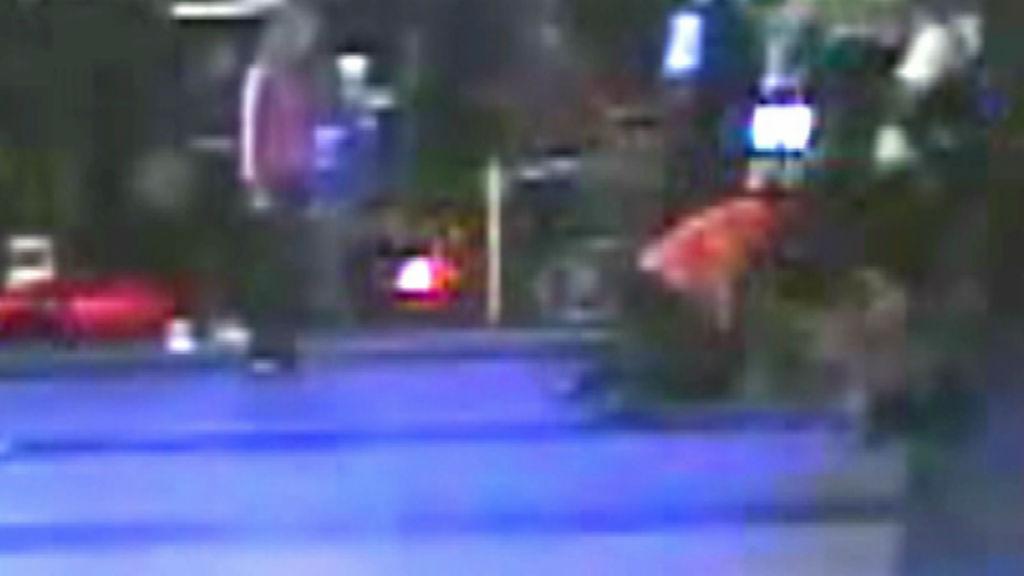 Police probe South Australian train station brawl