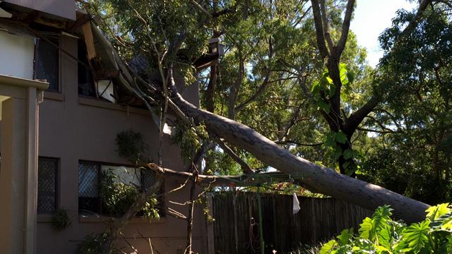 Wet, wild and windy: Heavy storms lash Queensland's coast (Gallery)