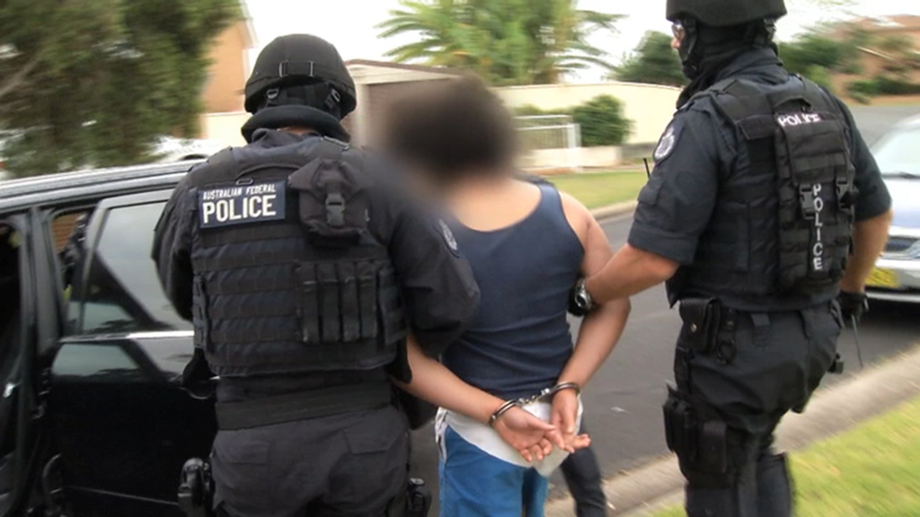 Real concern Sydney teen arrested in counter-terror raids could commit serious crime if bailed: court