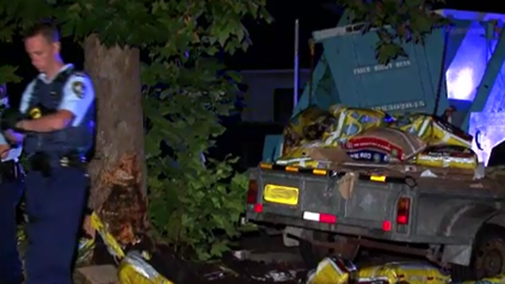 Car filled with bags of manure crashed after driver 'overpowered' by stench