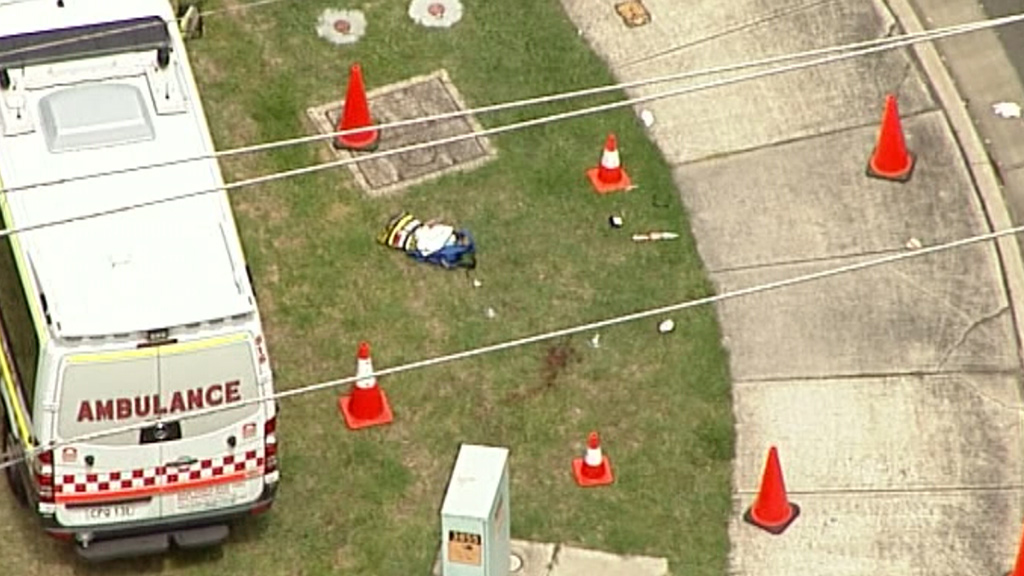 Paramedics attempted to treat the woman at the scene. (9NEWS)