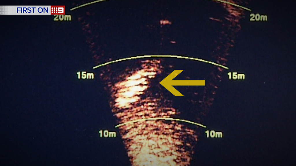 A sonar image of a shark, as seen by the divers on a recent operation. (9NEWS)
