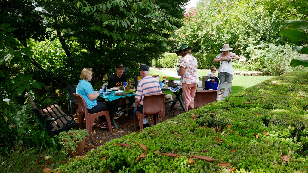 A group of visitors participate in horticultural therapy. (Ehsan Knopf/9NEWS)