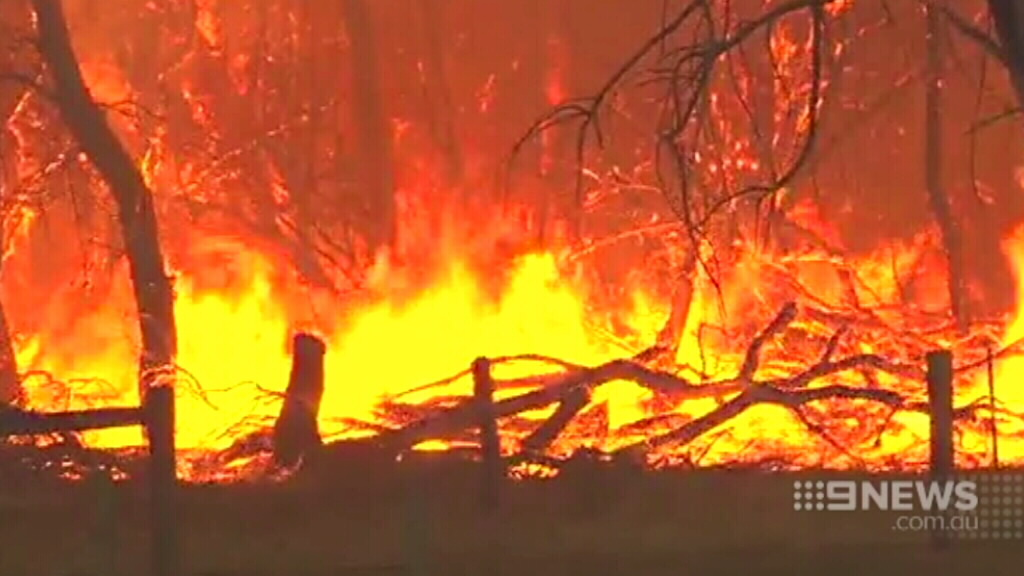 At least 21,000 hectares have been burned. (9NEWS)
