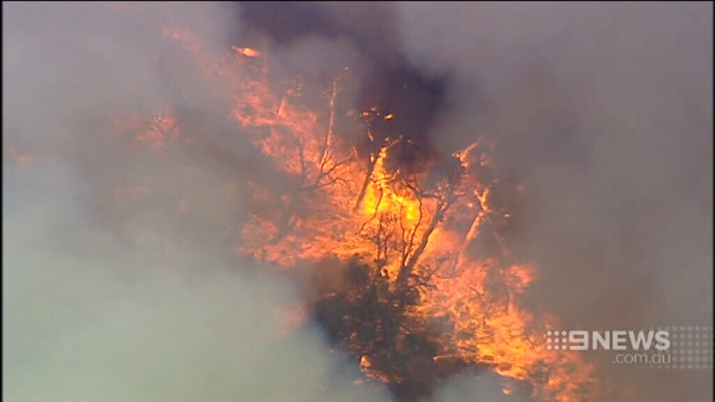 Lightning is believed to have sparked the fires. (9NEWS)