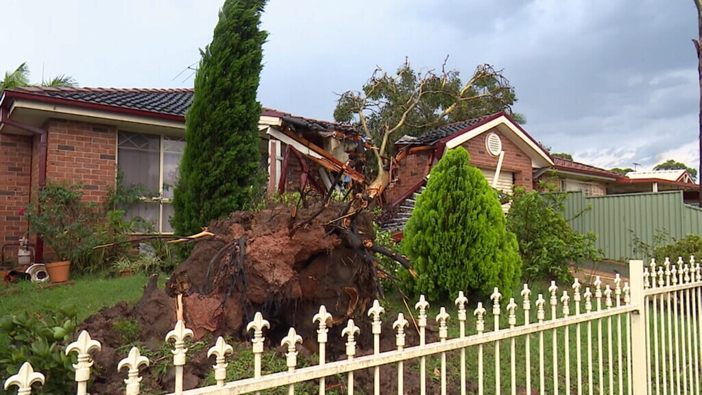Clean-up begins in Sydney after intense storms claimed the life of a man in the city's west